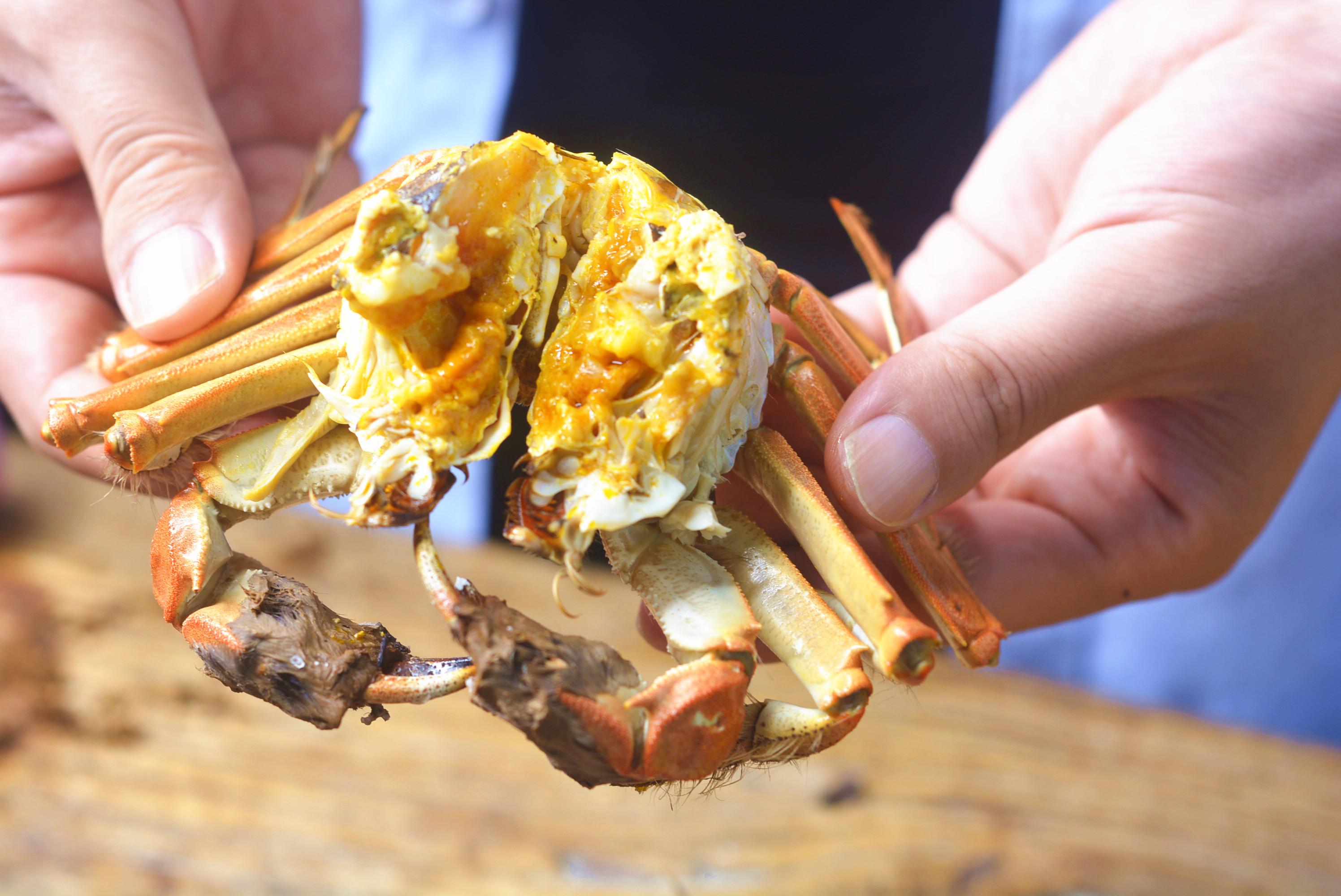 秋天螃蟹肥,教你7種螃蟹吃法,一星期每天不重樣,做法還簡單