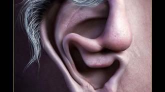 除了耳朵,還看到什麼?