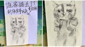 撿到貓「隨手幫畫素描」公告招領!貓咪「本尊曝光」網笑讚:真沒亂畫啊~